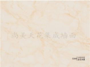 C009大理石系列